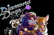 Слот Diamond Dogs играть на деньги