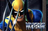 Игровой автомат Wolverine на деньги