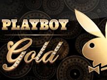 Играть онлайн в виртуальный слот Playboy Gold